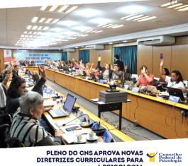 Na foto, membros do CNS estão com as mãos levantadas, votando pela aprovação das DCNs em Psicologia